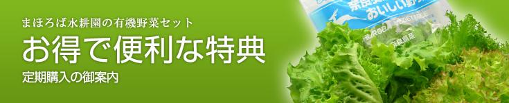 まほろば水耕園お無農薬野菜【定期購入案内】
